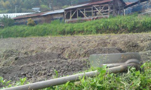 大阪の有機農家