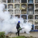 ブラジルのジカ熱対策