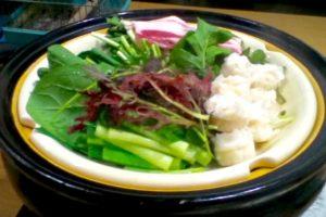 無農薬の蒸し野菜鍋
