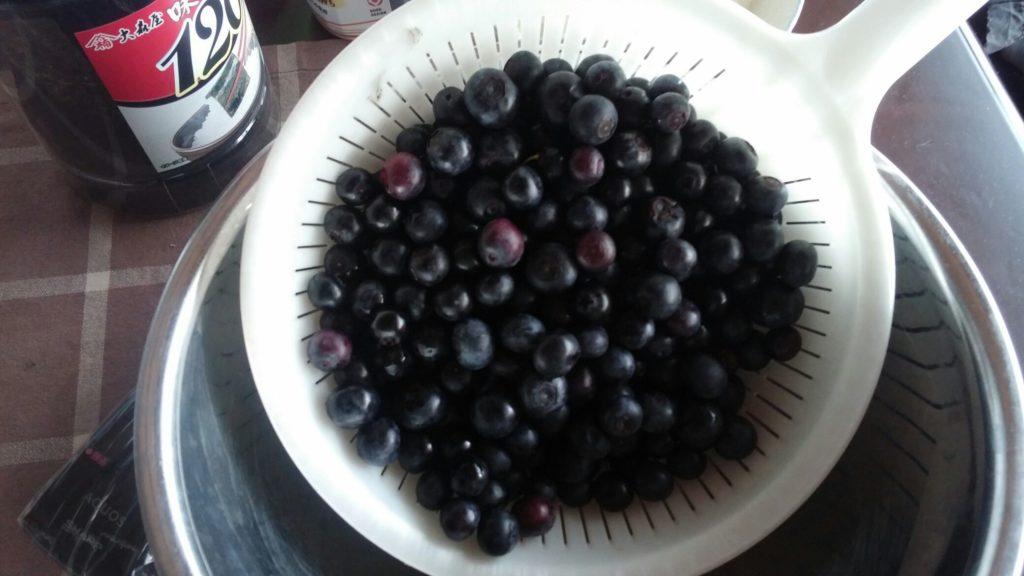自然栽培 ブルーベリー