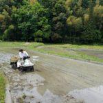 オーガニック米の田植え