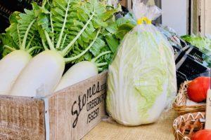 有機野菜のこだわり鍋 2018
