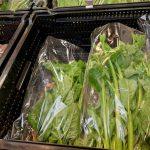 無農薬 夏野菜 つるむらさき