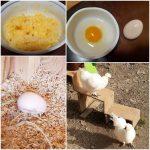 烏骨鶏の卵ご飯